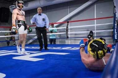 Team McGregor Leak Photo Of Malignaggi Down On The Canvas