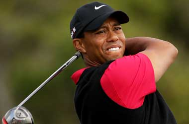 A Reassuring Comeback from Tiger Woods at the Hero World Challenge