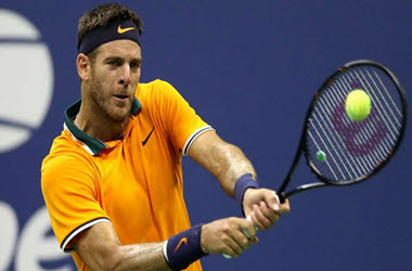 Del Potro defeated John Isner in U.S. Open Quarterfinals