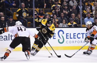 Jaroslav Halak Almost Earned Shutout as Boston Bruins Win Against the Mighty Ducks
