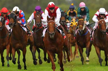 Top Canadian Sports Betting Sites For Horse Racing